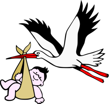 626px-Stork_with_new-born_child.png