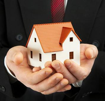 House In Hand.jpg