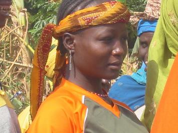 Niger Woman.jpg