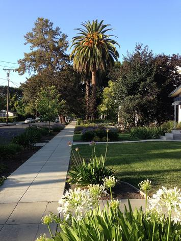 Sidewalk_and_street_in_Mountain_View,_California.jpg