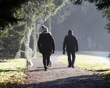 people-walking-dog-in-park.jpg