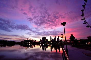 singapore-purple.jpg