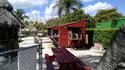 Reep - 5 - Everglades vernacular.jpg
