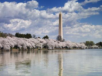 Washington_Monument,_Washington,_D.C._04037u_original.jpg