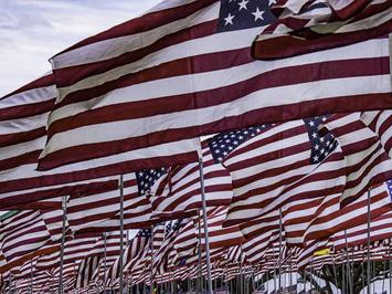 american-flags_Circe-Denyer.jpg