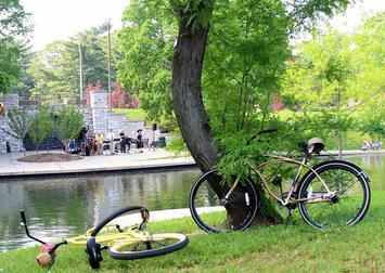 benton-park-neighborhood.jpg