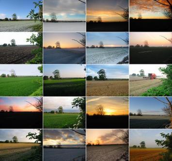 changinglandscape.jpg