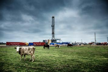 oil-rig-and-cows-in-the-heartland-1400x-q100.jpg