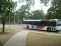 METRO_Bus_on_Cullen_Boulevard.jpg