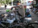 Raven on a Beijing Bike; Stevenson.png