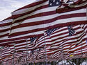 american-flags_Circe-Denyer.jpg