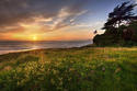 california-sunset_1.jpg
